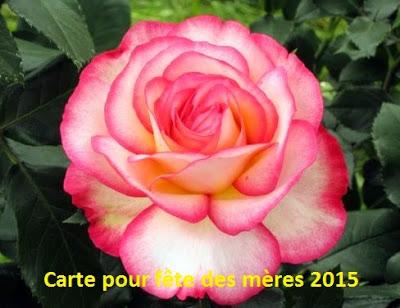 133 texte2Banniversaire - CARTE POUR FETE DES MERES 2020