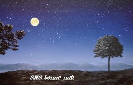 146 texte2Banniversaire - SMS BONNE NUIT