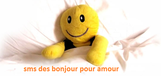 1 texte2Banniversaire - SMS DES BONJOUR POUR AMOUR