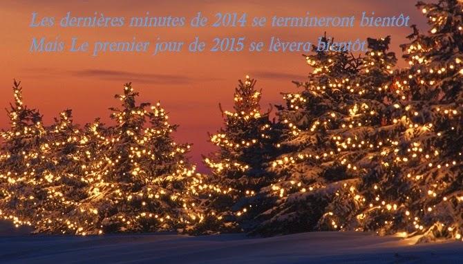 254 texte2Banniversaire - CARTE POUR VOEUX FIN D'ANNEE