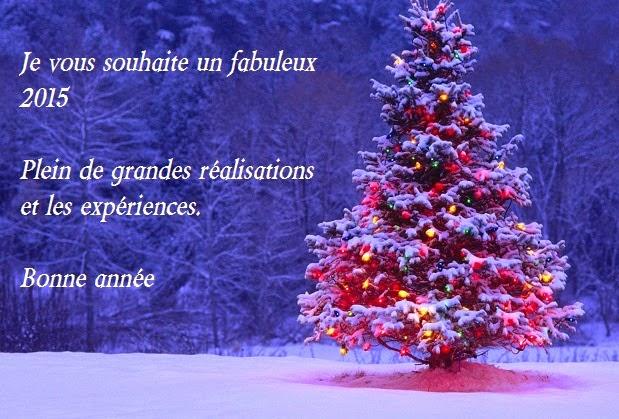 256 texte2Banniversaire - CARTE POUR VOEUX FIN D'ANNEE