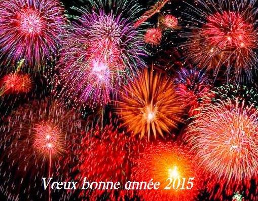 260 texte2Banniversaire - VOEUX BONNE ANNEE 2020