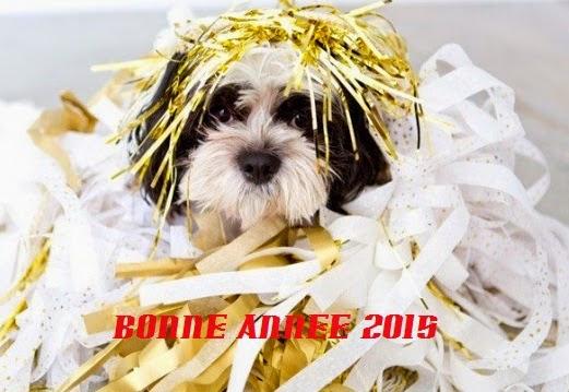 264 texte2Banniversaire - CARTE BONNE ANNEE 2020 MARRANT