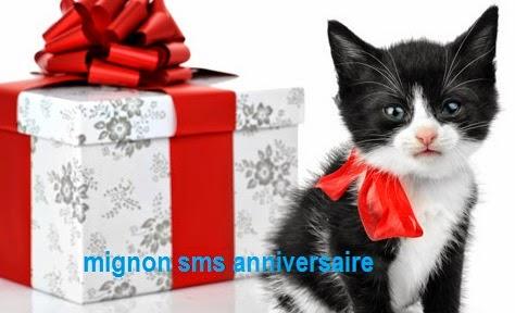 290 texte2Banniversaire - MIGNON SMS D'ANNIVRSAIRE