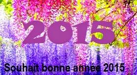 311 texte2Banniversaire - SOUHAIT BONNE ANNEE 2020