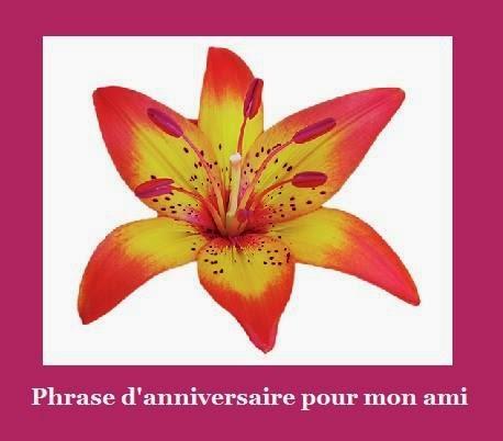 328 texteanniversaire - PHRASE D'ANNIVERSAIRE POUR AMI