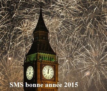 338 texte2Banniversaire - SMS BONNE ANNEE 2020