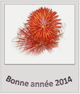 352 texteanniversaire - CARTE BONNE ANNEE THEME FEUX ARTIFICE