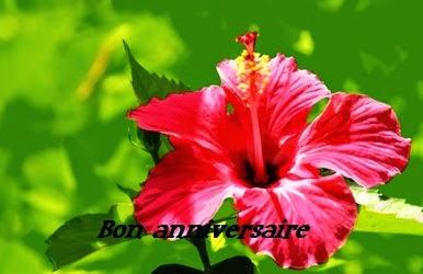 texte2Baniversaire - CARTE ANNIVERSAIRE D'AMITIE